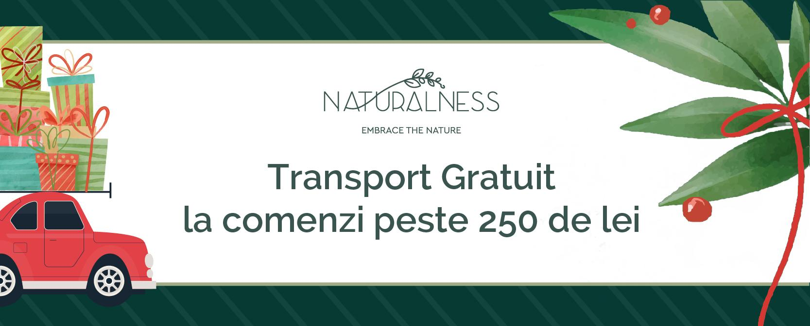 Luna Cadourilor Xmass 2020- transport
